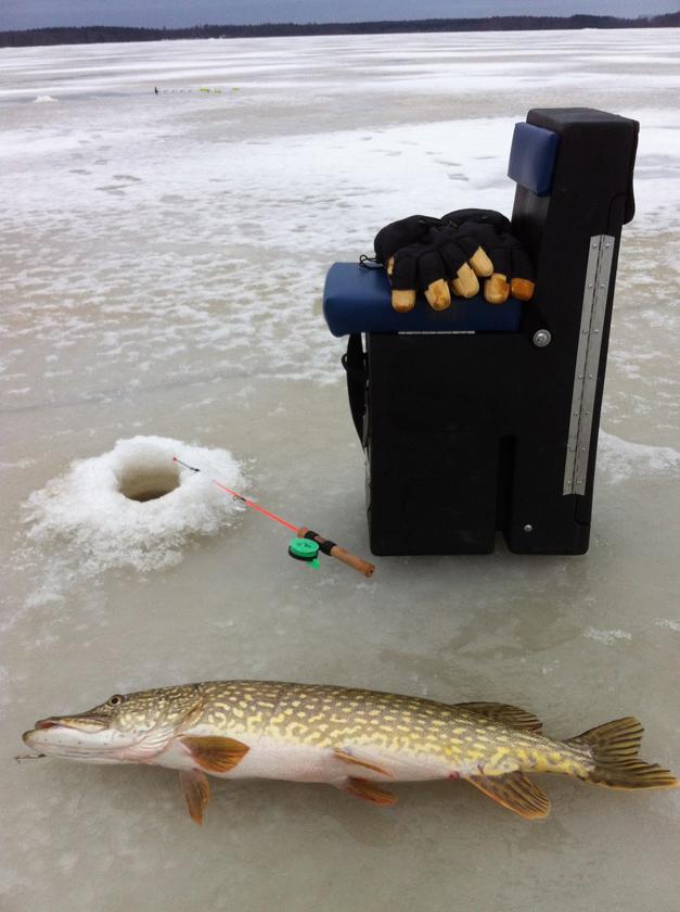 Шведская рыбалка